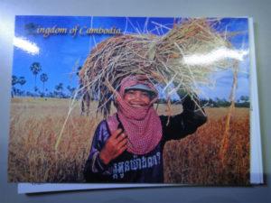 カンボジア 手紙